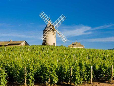 Bourgogne – Beaujolais