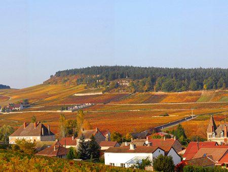Burgundy – Côte Chalonnaise