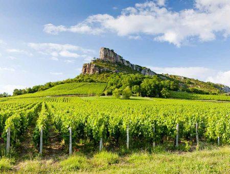 Burgundy – Mâconnais