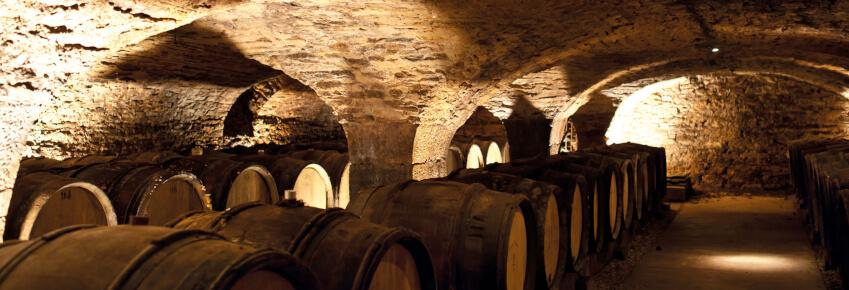cave comte senard blog